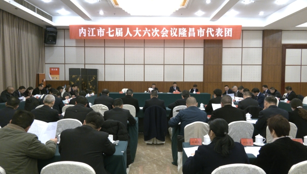 市七届人大六次会议各代表团继续举行分组审议