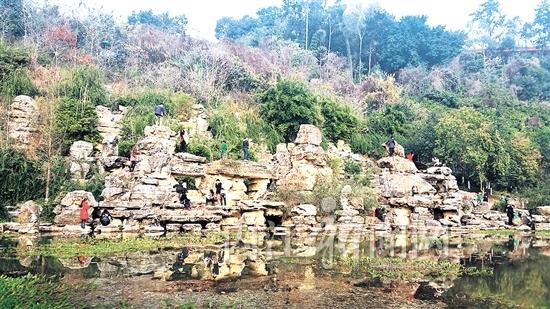 鱼池假山设计展示