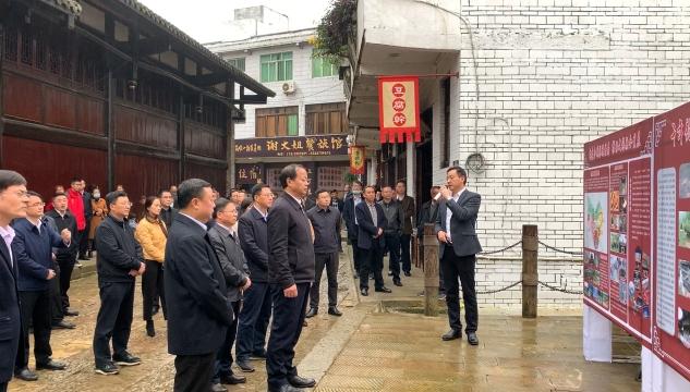 2020内江市文化和旅游发展大会与会人员参观考察召开重点旅游项目