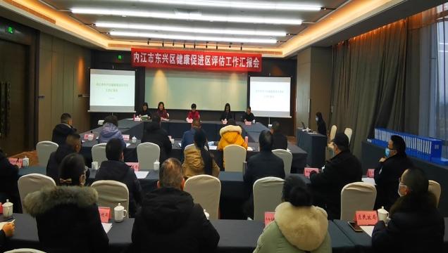 东兴区健康促进区建设受省专家评估